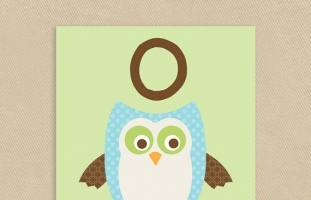 O is for Owl Wall Art
