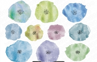 10 Hand Painted Watercolor Flowers
