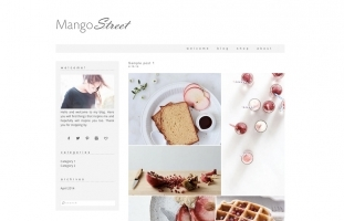 Mango Street - Wordpress Theme