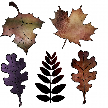 Fall Leaves (1) Clipart