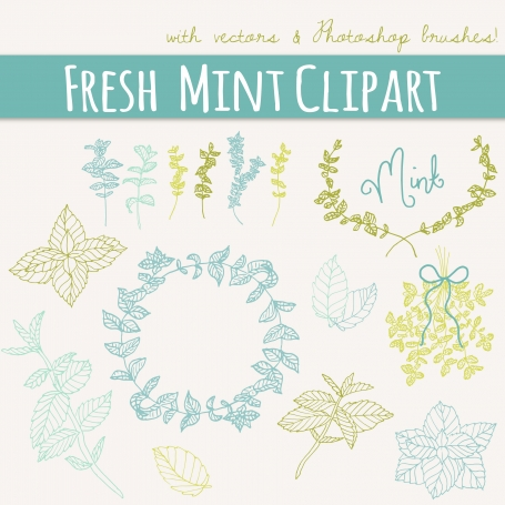 Fresh Mint Sprigs Clip Art