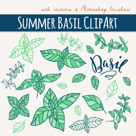 Summer Basil Clipart & Vectors