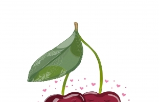 Cherries With a Flower in Love