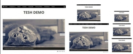 Tesh Pre-made Blogger Template