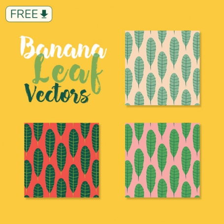 Fresh Banana Leaf Vectors