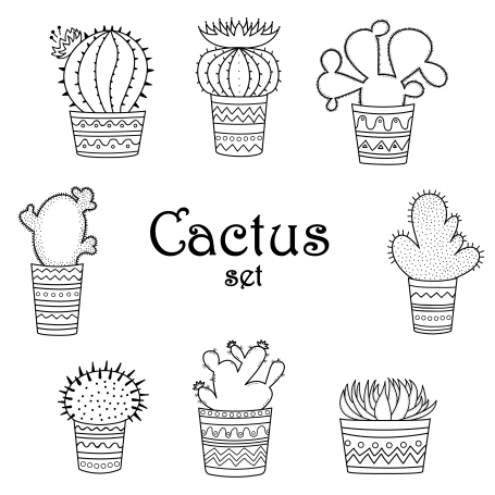 Black And White Cactuses Mexican