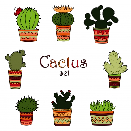Color Cactus Set Mexican Style