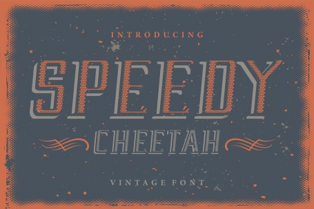 Speedy Cheetah attractive Display