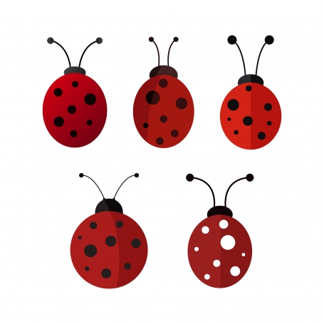 Ladybugs set