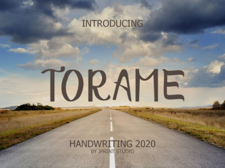 Torame Family Font